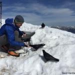 David Klančar - Ornitolog