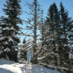 Robert Krštinc - Zimska idila