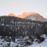 Roman Mihalič - Tičarice v sončnem zahodu