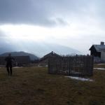 Pašniki nad planinskim domom